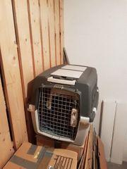 Hunde Box