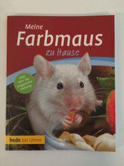 Buch: Meine Farbmaus