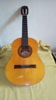 Hoefner Meisterwerk Gitarre
