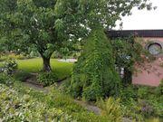 Pachtgarten in Kleingartenverein