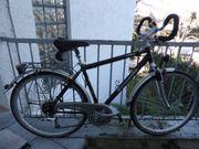 Herren - Trekking 28 Zoll -Fahrrad - Top
